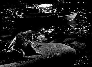 1955-La_noche_del_cazador_1955_DVDrip_Dual_ZonaRippers_para_Elitefreak_net_by_Cerni_avi_003329640.jpg